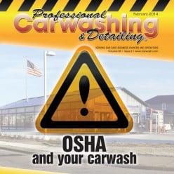 Professional Carwashing and Detailing